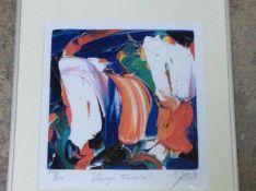 Jas 'Orange is my favourite' lithografie, ges. en gedat.'99, 229/250, 32x30cm