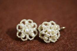 A pair of 19thc abalone blister and seed pearl drop earrings 1.5cm