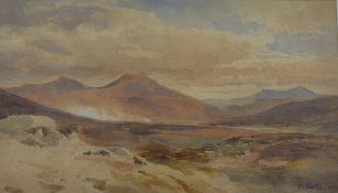 Paul Jacob Naftel R.W.S. (1817-1891), Rannoch Moor, signed lower right and dated 1867,