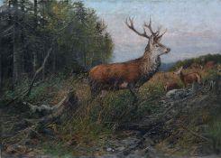"""Albert Ernst Mühlig """"Sichernder Rothirsch"""". 2. H. 19. Jh. Öl auf Leinwand. Signiert """"A. Mühlig"""" u."""