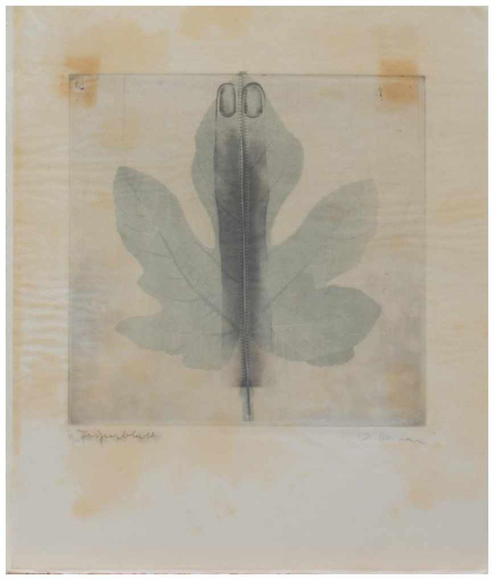 Los 29 - Dörte Härten (1937 - ?, deutsche Grafikerin u. Zeichnerin) Gefingertes Blatt Fotomontage/ Original