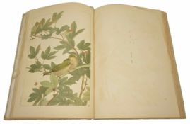 A large Japanese silk bound book containing bird illustrations finely coloured with illustration