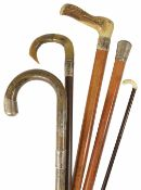 A malacca cane with silver handle walking stick together with two horn handled and silver banded