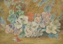 Thomas F Collier, (British 1840 - 1891) watercolour of 'Pelargoniums' in a gilt frame, signed