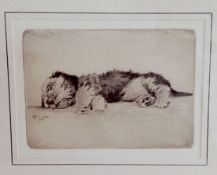 Cecil Charles Windsor Aldin (British 1870 - 1935) an etching of a sleeping terrier