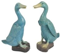 A pair of Chinese porcelain figures of geese, 20th centuryboth in a turquoise glaze realistically