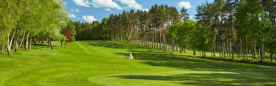 Golf club experience at Foxhills