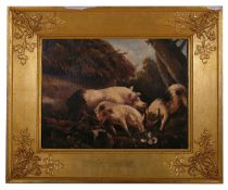British School, 18th century 'Three pigs foraging in woodland', oil on canvas, indistinctly signed