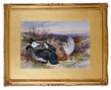 James Hardy Junior (British 1832-1889) 'Blackcock and grouse', watercolour, signed lower right