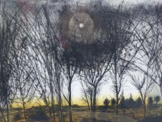 (ARR) WALTER HOYLE, WINTER TREES, ETCHING AND AQUATINT, SIGNED, TITLED AND NUMBERED 71/150, 45 X