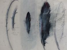 (ARR) MACFARLANE, STUDY OF PROP FEATHERS FOR MIDSUMMER NIGHT'S DREAM, SIGNED, WATERCOLOUR AND PENCIL