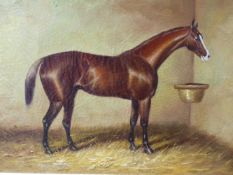 ENGLISH SCHOOL (LATE 19TH/EARLY 20TH CENTURY), PORTRAIT OF A CHESTNUT HORSE IN A STABLE, OIL ON