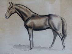 CLIFFORD WEBB (ARR), HORSE STUDY, CHARCOAL AND CHALK, SIGNED, 20.5 X 28CM.