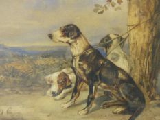 EARLY 20th.C. ENGLISH SCHOOL THREE ENGLISH POINTERS INITIALLED D.C. WATERCOLOUR. 25.5 x 35.5cms