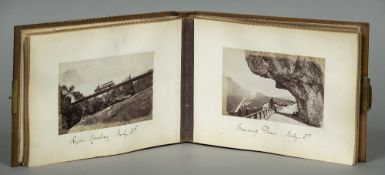A Victorian photograph album The carved wood cover worked with a fruiting vine panel,
