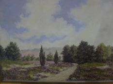 Ritter, landscape,