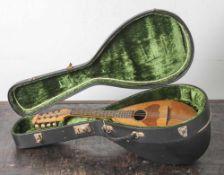 Mandoline, um 1900, gebauchter und gefächerter Holzkorpus, in org, Koffer. L. ca. 59 cm, 1 Saite