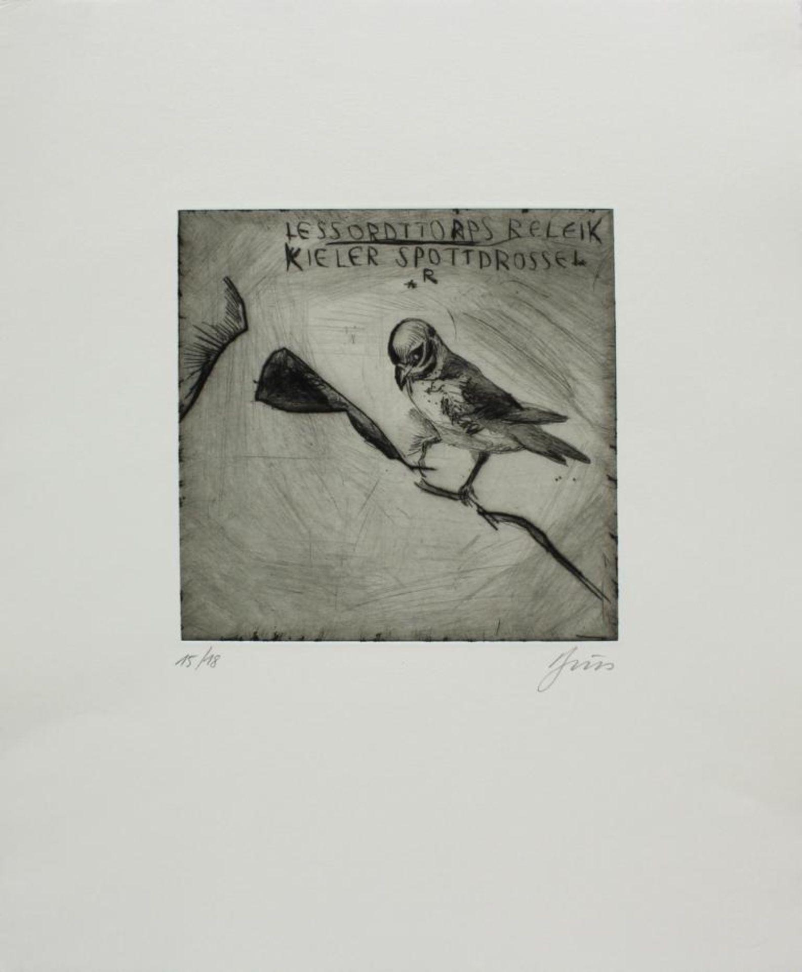 Los 29 - Brus Günter (geb. 1938) Drossel Kaltnadelradierung handsigniert und nummeriert 15/18 40 x 48 cm