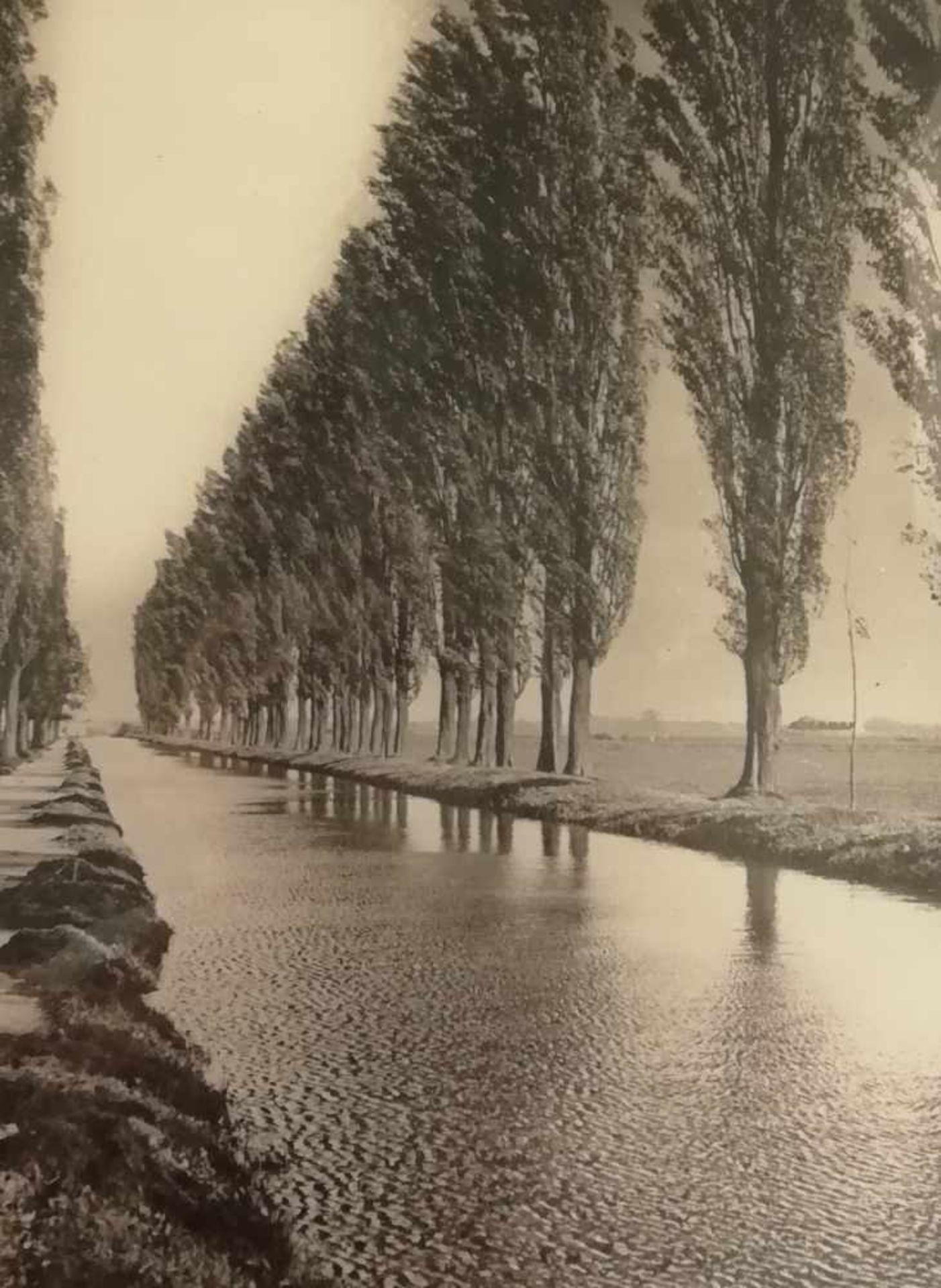 FotografieWiener Neustädter Kanal, 37,5x38,5 cm, in Passepartout, verglast, gerahmt;