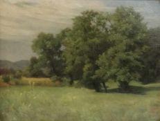 Louis Weissenbacher 1923Wiese mit Bäumen, Öl auf Leinen, 31x39cm, gerahmt, Rahmen besch.;