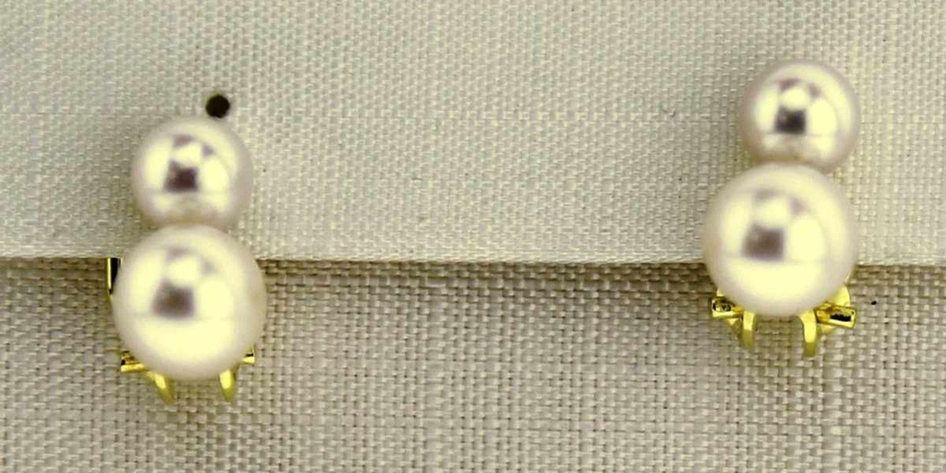 Ohrclips 333 Gold mit Zuchtperlen, NOS Gesamtgewicht ca. 2,9 Gramm, Zuchtperle Durchm. 6,3 / 5 mm,