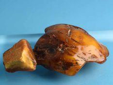 Großer und kleiner Naturbernstein (ca. 246 g und ca. 58 g.) Naturbelassene Bernsteine in