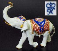 Indischer Elefant mit erhobenem Rüssel. Indischer Elefant mit erhobenem Rüssel. Rudolf Kämmer