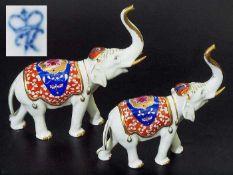 Zwei indische Elefanten mit erhobenem Rüssel. Zwei indische Elefanten mit erhobenem Rüssel. Rudolf