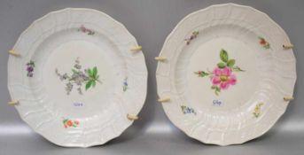 Zwei TellerKorbrand, Rand und Spiegel mit bunter Feldblumenbemalung, Dm 20 cm, blaue