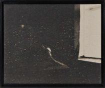 BIRGIT GRASCHOPF (1978 WIEN) o. T., 2017 aus der Serie NOCTURNAL Fotoemulsion auf Schleifpapier,