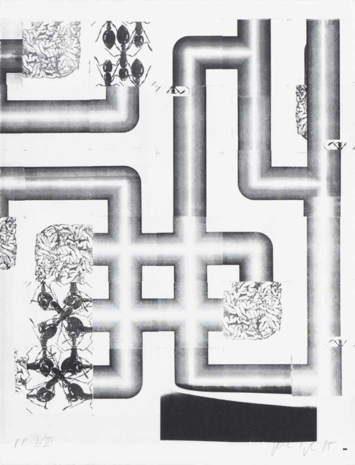 PETER KOGLER(1959 INNSBRUCK)PORTFOLIO (Ameisen), 1995Sieben zweifarbige Siebdrucke auf Arches - Bild 3 aus 8