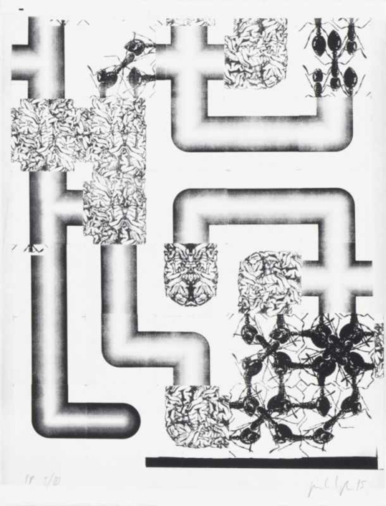PETER KOGLER(1959 INNSBRUCK)PORTFOLIO (Ameisen), 1995Sieben zweifarbige Siebdrucke auf Arches - Bild 2 aus 8