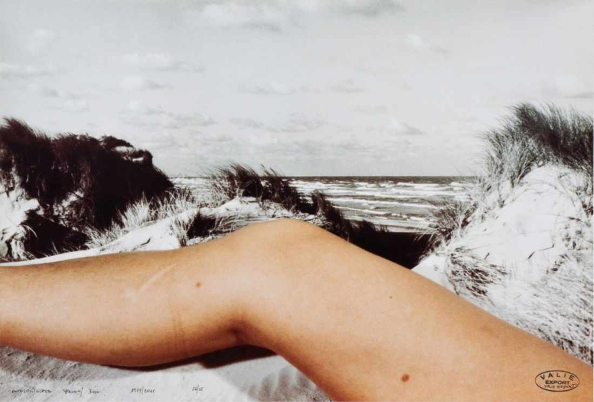 VALIE EXPORT(1940 LINZ)ONTOLOGISCHER SPRUNG/BEIN, 1974/2011Farbfotografie, 42 x 62 cm,