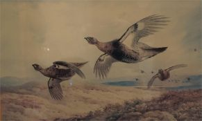 A framed limited edition print No 41 of 400 by A. Thorburn of grouse in flight