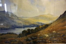 Watercolour of landscape with sheep, unsigned 14 x 21 inch