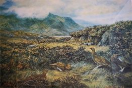 Framed signed print by C Stanley Todd, of grouse in a moorland landscape