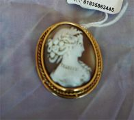 Gold mounted cameo brooch