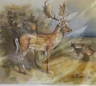 After Archibald Thorburn, A Group Of Seven Assorted Animal Prints, 24 x 29cm, mounted on card, (7)