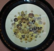 A Collage of Pressed Flowers, on a silk backing, 44cm diameter, in an ebonised circular frame