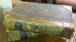"Two Leather Half Calf Volumes of ""A History of the Earth and Animated Nature"", by Oliver"