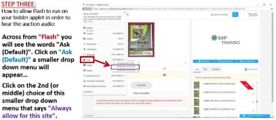 CHROME USERS: HOW TO ALLOW FLASH IN ORDER TO HEAR AUDIO - STEP 3
