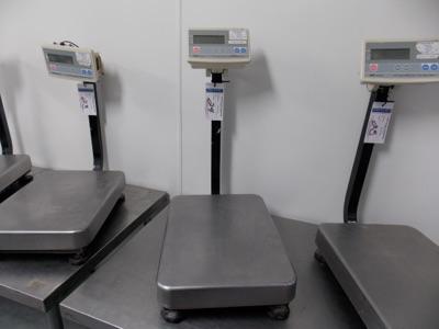 Lot 24 - 150 Lb Capacity Scale | Digital Platform Scale, 150lb. Cap Scale I.D. MB02 | MODEL# FG-60KAL |