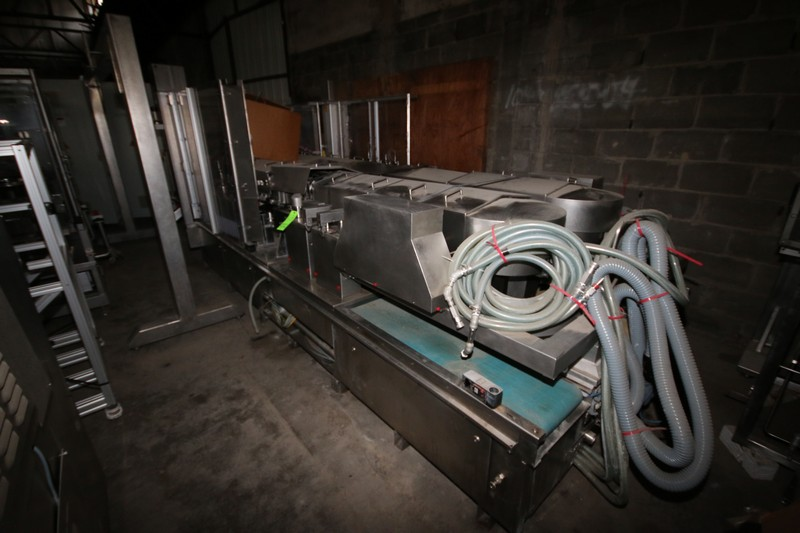 Lot 43 - Alphacos Dual Lane IV Filler, Type 526, S/N 526002, 7000 kg Weight Bag Capacity, S/S Frame (