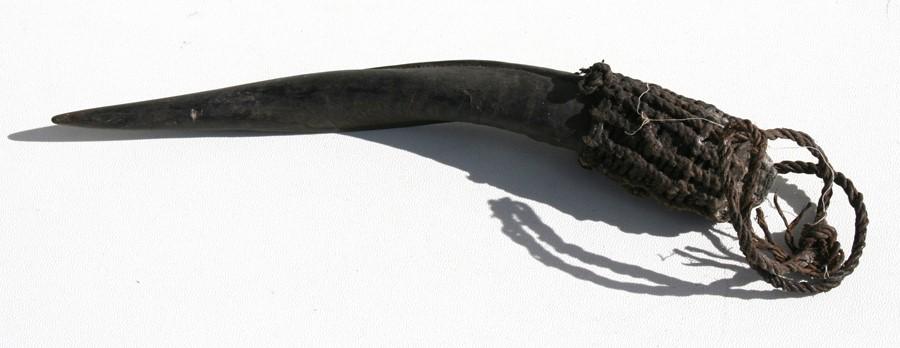 Lot 39 - An African horn snuff bottle, 28cms (11ins) long.