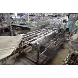 2002 Thiele reciprocating placer, SN T7300A281, 8 lane, Fedco table, Model C0.40.16, SN 201084, SS f