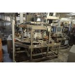 Thiele Special IM Cartoner/Bagger, rotary style, touch screen controls **Rigging FEE: $200 **