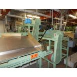 MFG N/A DICED/WHOLE TOMATO SORTER WITH (2) FILLING STATIONS, CAN CONVEYORS S/N: N/A (CI)