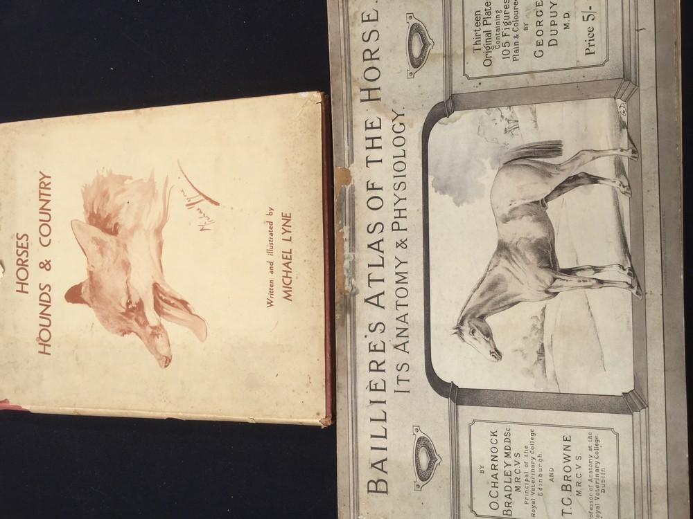 Equestrian/veterinary/anatomy/fox hunting/sporting interest ...