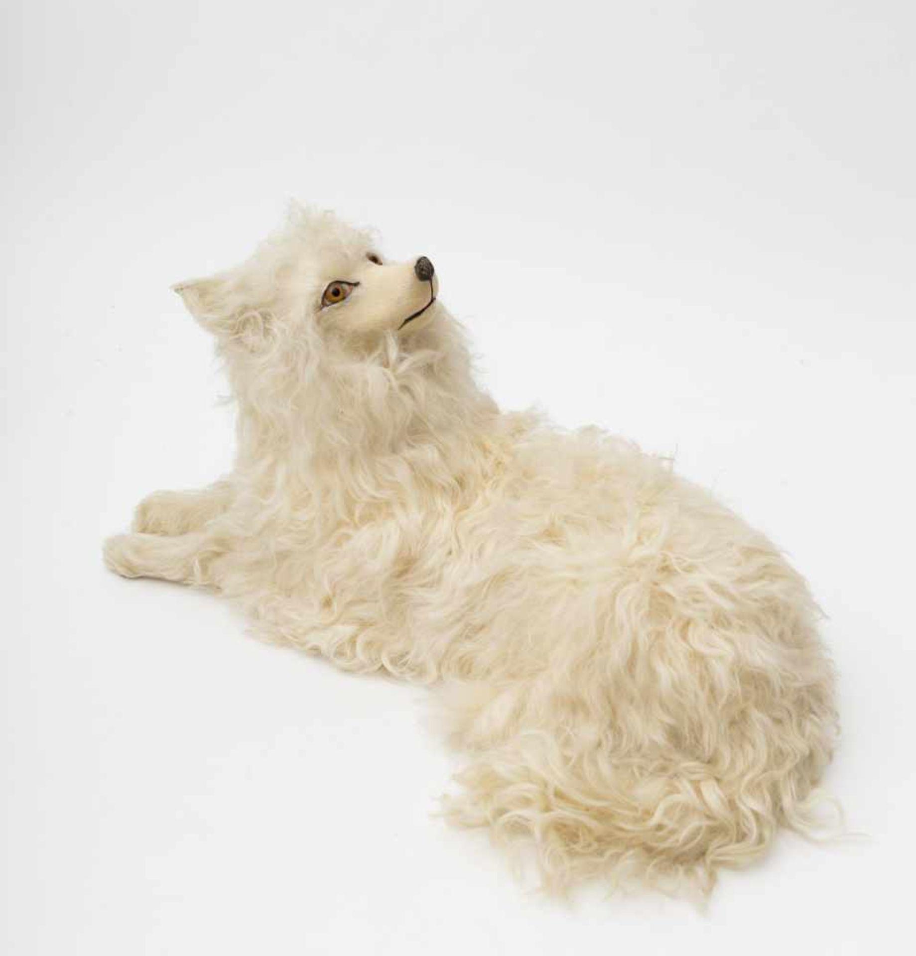 Pyjama carrier Depicting a Pomeranian dog.