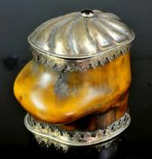 A GERMAN SILVER MOUNTED SNUFF BOX OF STEINBOCK HORN, MID TO LATE 18TH CENTURY.Origin: Germany,